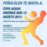 ¡Ya están abiertas las inscripciones para la Copa Aguas Andinas!