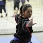 Sergio Livingstone recibirá Torneo de Artes Marciales