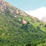 ¡A disfrutar de la Quebrada de Macul haciendo trekking!