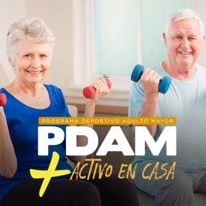 Programa Adulto Mayor en Movimiento en Casa